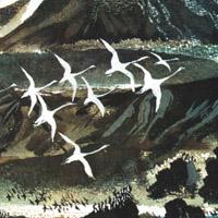 Никита Чарушин «На великом морском пути»
