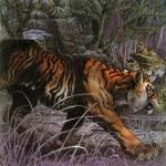 """Eric Kincaid """"Jungle Book"""""""