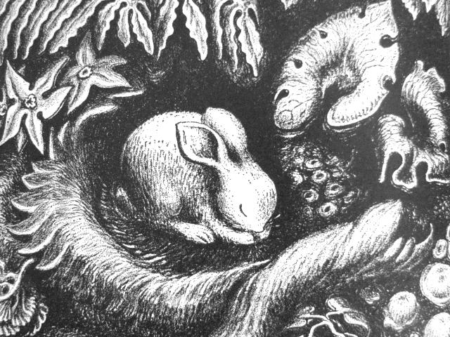 """Wanda Gág """"The ABC Bunny"""""""