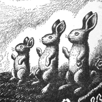 Wanda Gág «The ABC Bunny»