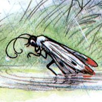 Владимир Сутеев «Под грибом»