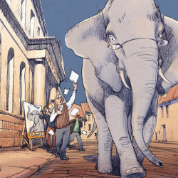 Катя Бауман «Слон в музее»