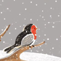 Carolina Rabei «Снег»